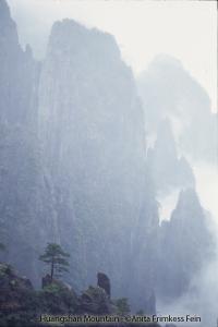 Huangshan Mountain ©Anita Frimkess Fein